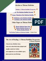 Tibetan Buddhist Perspective on Healing