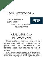 Dna Mitokondria (Mtdna)