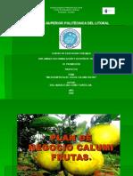 EXPOSICIÒN DE PROYECTO CALUMI FRUTAS DE MARIA GOMEZ SANTILLAN.ppt
