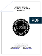 hematoxylin+and+eosin+staining_4.pdf