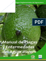 Manual Aguacate