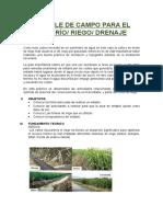 ENTABLE DE CAMPO PARA EL SEMBRÍO.docx