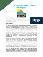 INFORME PLANIFICACION-PEJEZA.docx
