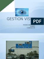 Gestion Visual