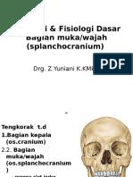 [sent] Kulpak UPN - Anatomi GILUT - drg. Yuni.ppt