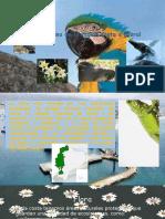 Flora y Fauna de La Región Costa o