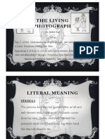 The Living Photograph - Elements and Questions