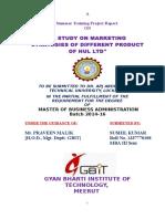 marketing strategies of different Products of HUL Ltd.doc