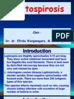 4. Spirochaetta - Leptospira