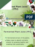 Fermented Plant JuiceFPJ