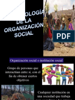 Antro Organización