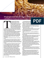 Wheat genome sequencing boosted