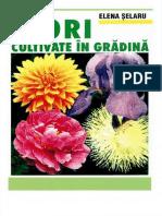 Flori cultivate in gradina (Elena Selaru) (2007).pdf