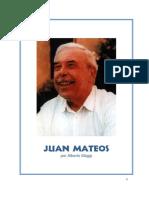 02 Quien Es Juan Mateos