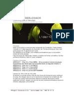 Líder Coach 2013-Email