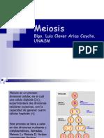 Intro Meiosis