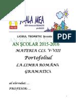 Portofoliu Teorie Gramatică Limba Română v-Viii