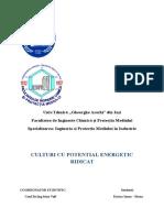Culturi-Energetice-final.doc