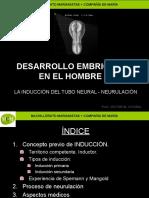 desarrollo-embrionario-humano-3-mcm.ppt