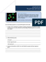 p53 Cancer Click Learn Worksheet