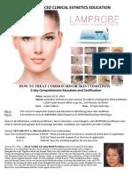 Lam Probe Flyer PDF