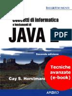 Concetti di Informatica e fondamenti di Java 2  Tecniche avanzate Horstmann.pdf