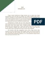 Teori Dan Makalah Spektrofotometri Uv