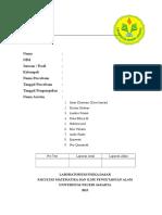 Softcopy Format Cover Laprak Fisdas
