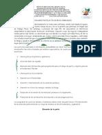 ACTIVIDADES PROFILÁCTICAS EN EL EMBARAZO.docx