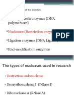 Lecture 5-Restriction Endonuclease