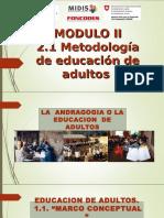 Metodologia de Educacion de Adultos