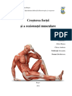 Reeducarea Fortei Musculare
