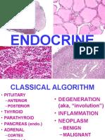 Ch24-Endocrine.pdf