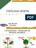 Fisiologia Vegetal (Modificado em 19/08/2006)