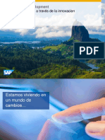 Sap Custom Development Asug Innovacion