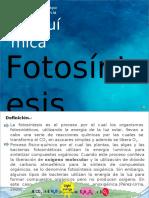 fotosintesis clase