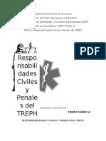 Responsabilidades Penales Del TREPH
