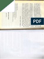 CapÃ-tulo II.pdf