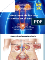 Infeccion Urinaria