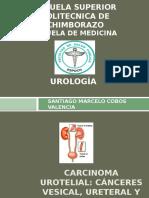 tumoresuroteliales-130520015415-phpapp01