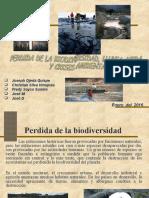 perdida-de-la-biodiversidad-lluvia-acida.ppt
