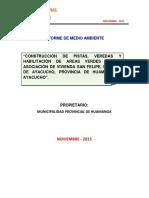Medio Ambiente Niembre 2015 Fsl (1)