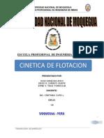 Cinetica de Flotacion