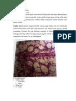 histologi jantung