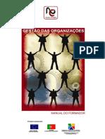 Estrutura e Comunicação Organizacional - Manual.pdf