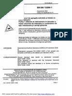 SR en 13286 1 2004 ENG Amestec Agregate