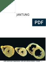 Jan Tung