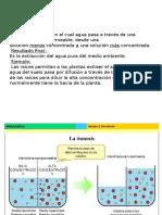 biologia SEMINARIO 1