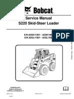 Manual s220