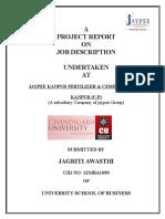 Final Project Report of Job Description( Updated )